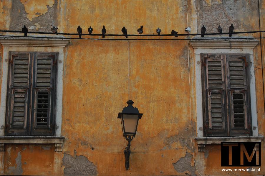 Stare miasto w Piranie