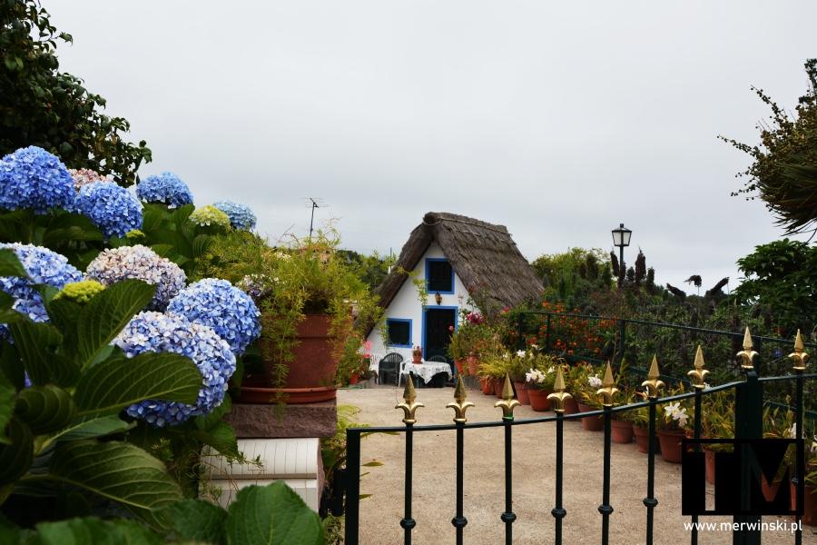 Tradycyjny domek pokryty strzechą w miejscowości Santana na Maderze