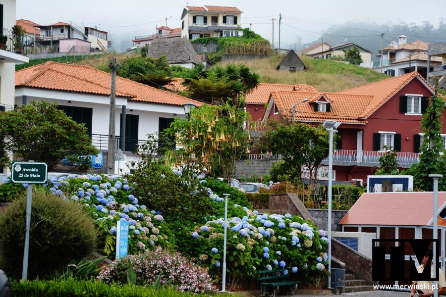 Widok na domy mieszkalne w miejscowości Santana na Maderze