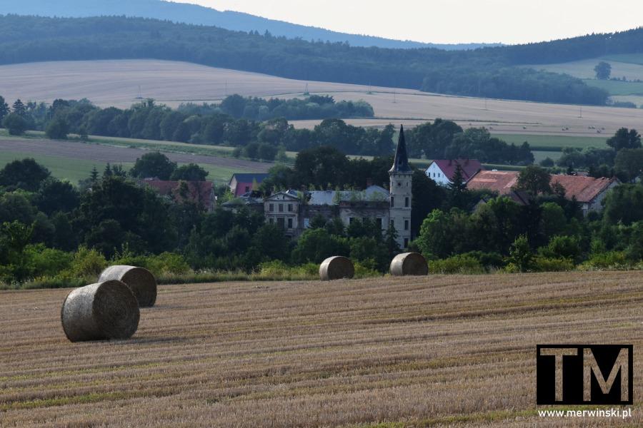 Pałac we wsi Janówek