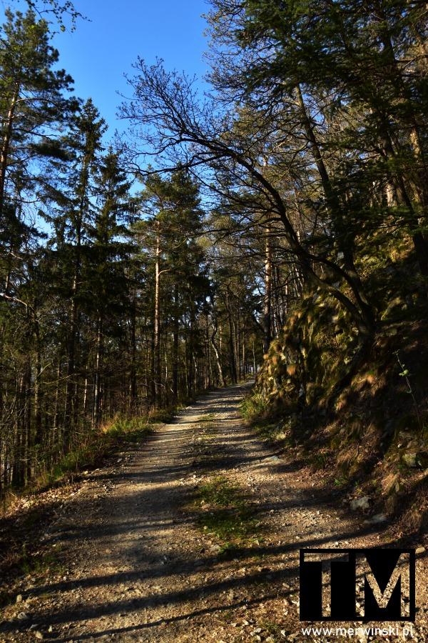 Droga na szczyt góry Raduni