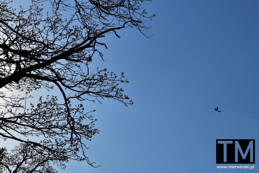 Samolot nad górą Radunią