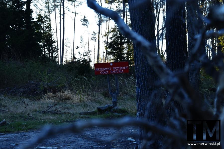 Tabliczka z napisem Rezerwat Przyrody Góra Radunia