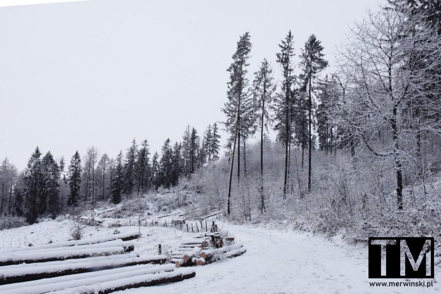 Szlak na Wzgórzach Kiełczyńskich
