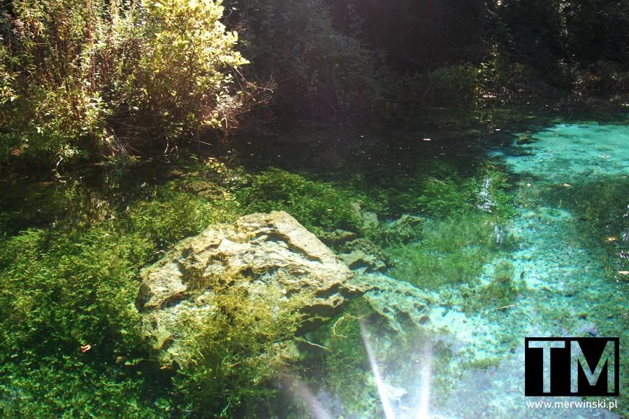 Dno zbiornika wodnego przy źródłach Czarnego Drinu