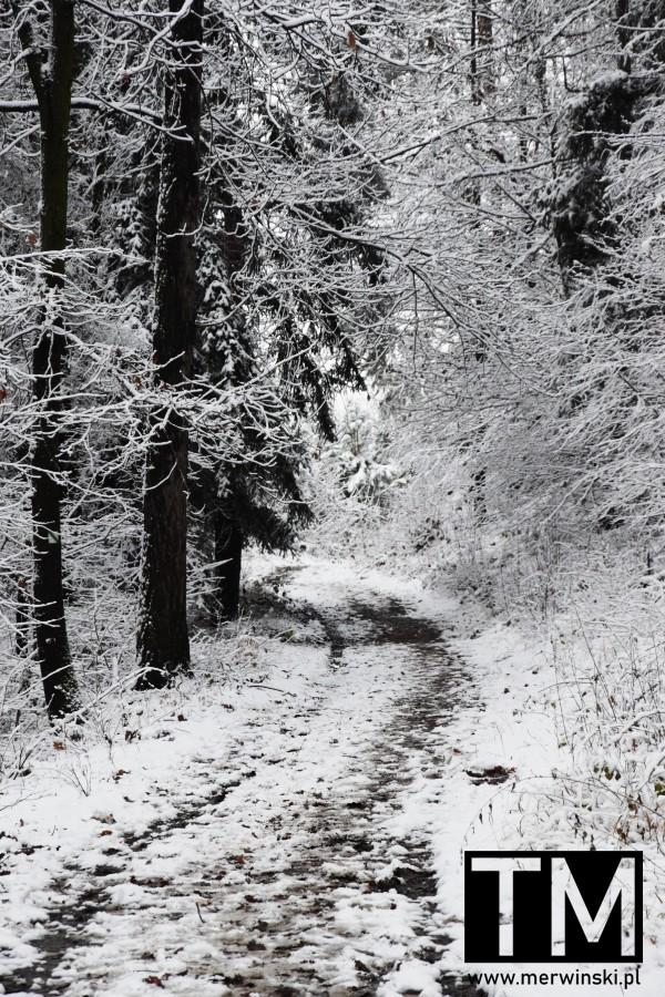 Droga we śniegu, dolnośląskie