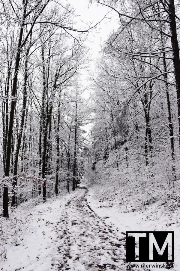 Szlak pełen śniegu, Wzgórza Kiełczyńskie