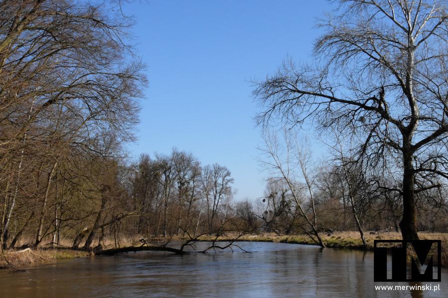 Rzeka Bystrzyca zimą