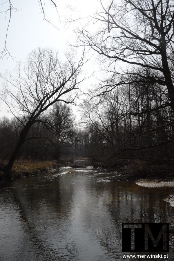 Rzeka Bystrzyca niedaleko Sadowic