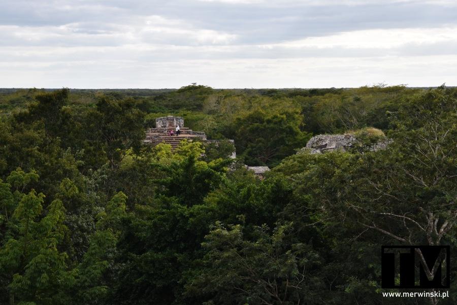 Dżungla na Jukatanie i majańskie ruiny