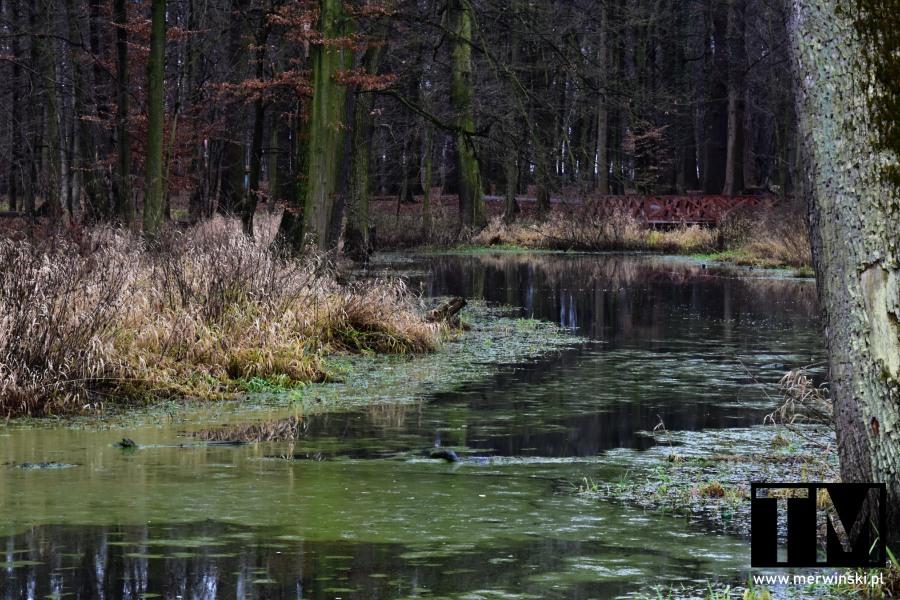 Mokradła, Kąty Wrocławskie, Dolina Bystrzycy