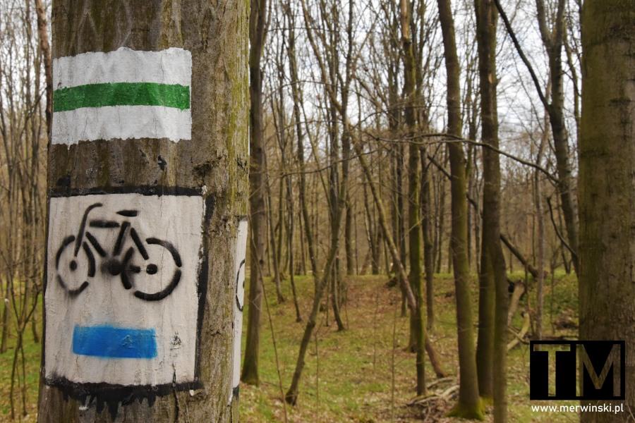 Niebieski szlak rowerowy w Dolinie Bystrzycy