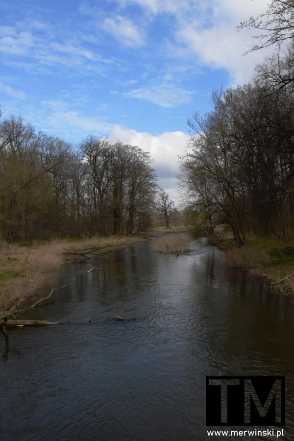 Rzeka Bystrzyca w Kątach Wrocławskich