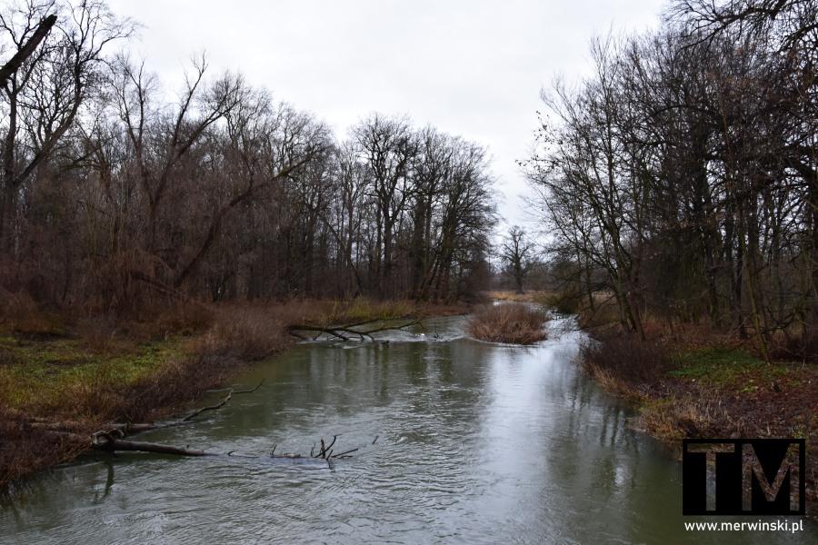 Rzeka Bystrzyca zimą, Kąty Wrocławskie