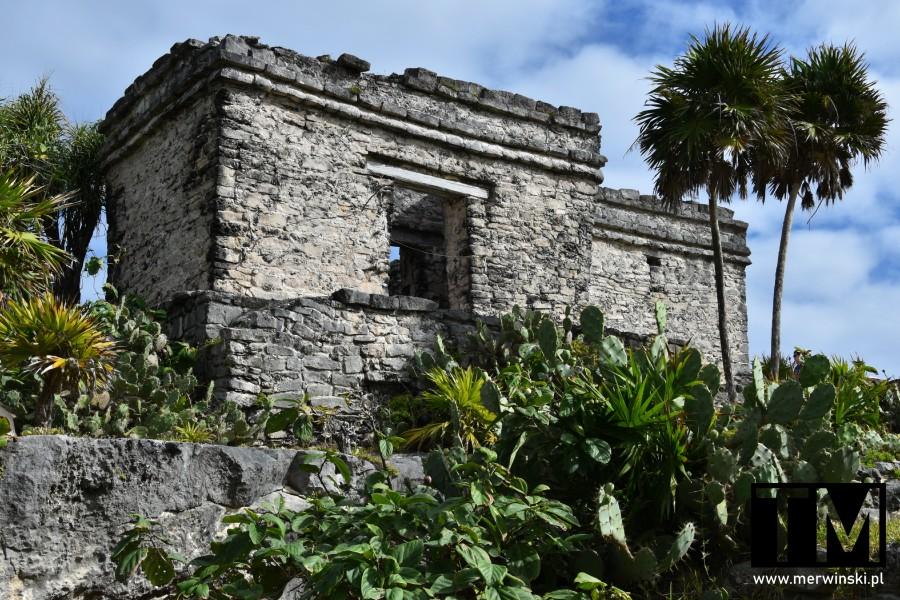 Majańskie ruiny w Meksyku