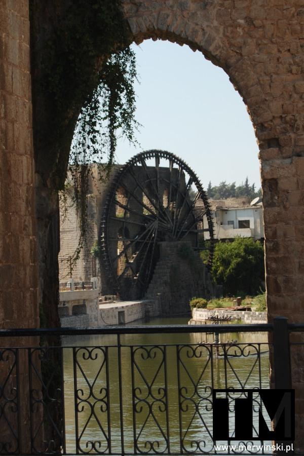 Noria nad Orontesem w Hamie w Syrii