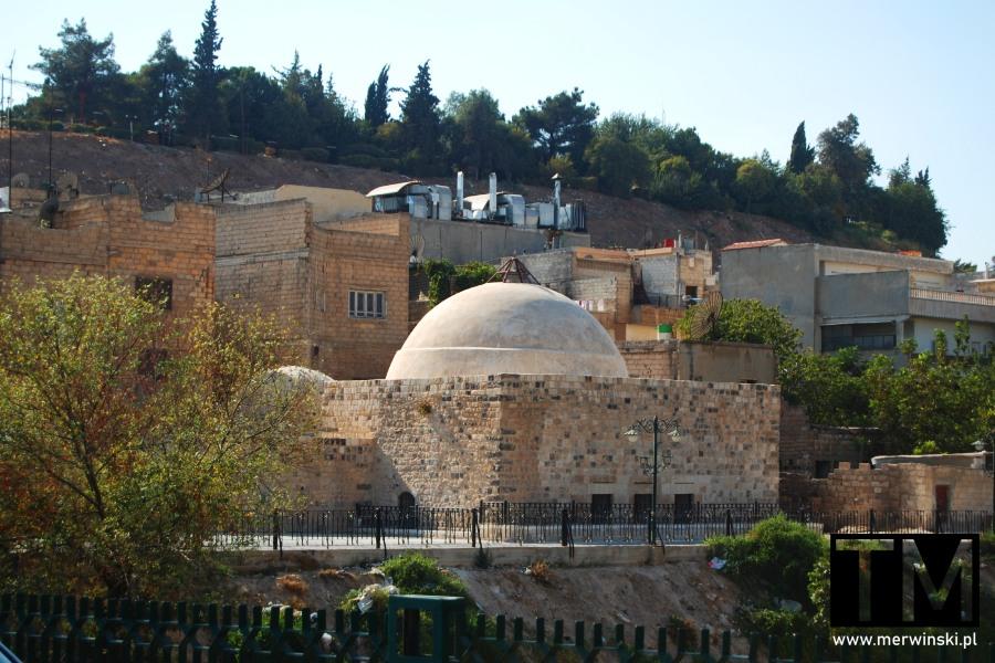 Zabudowania w mieście Hama