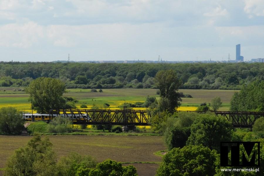 Kotowice, wieża widokowa, widok na Wrocław i most kolejowy
