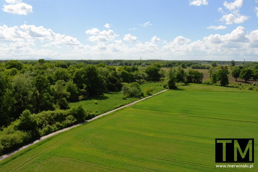 Widok z wieży widokowej w Kotowicach na polanę i Wrocław