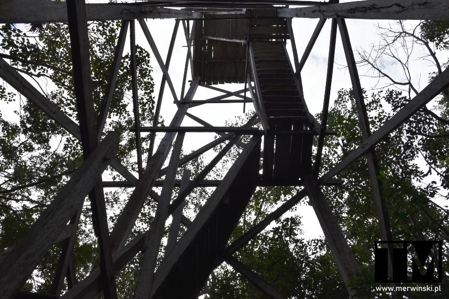 Drewniana wieża widokowa w rezerwacie biosfery Sian Ka'an