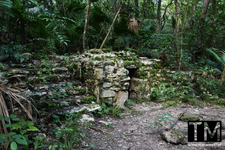 Pozostałości budynku Majów w Quintana Roo