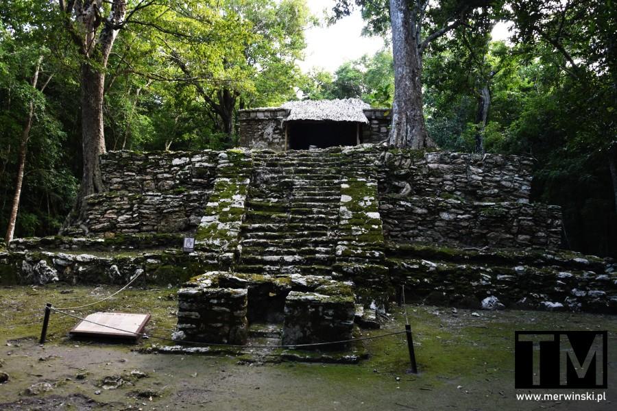 Schody do świątyni Majów