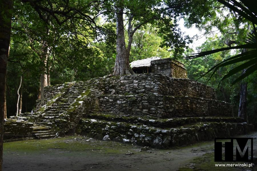 Świątynia w dżungli na terenie Muyil