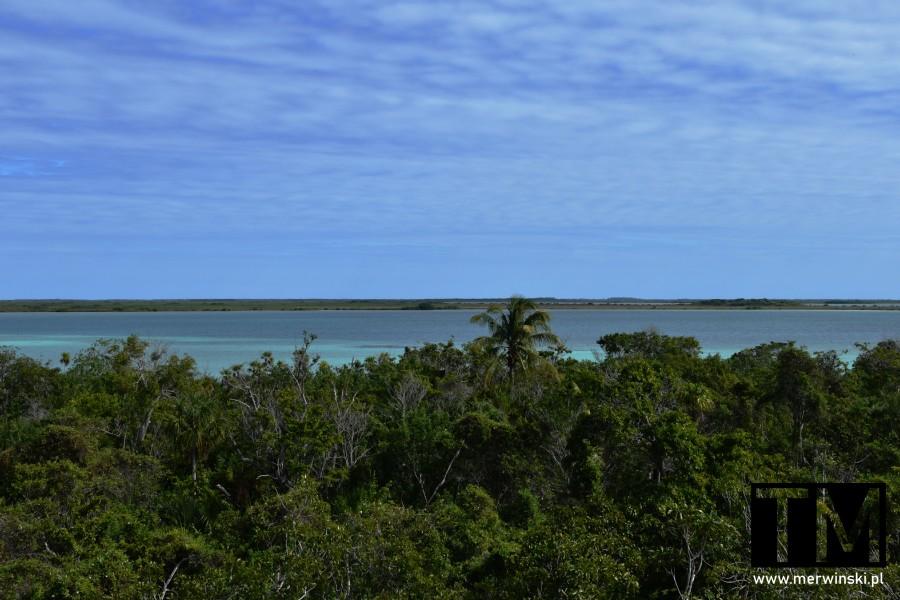 Widok z wieży widokowej niedaleko Muyil