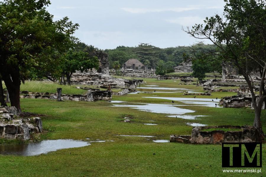 Widok na całą strefę archeologiczną El Rey