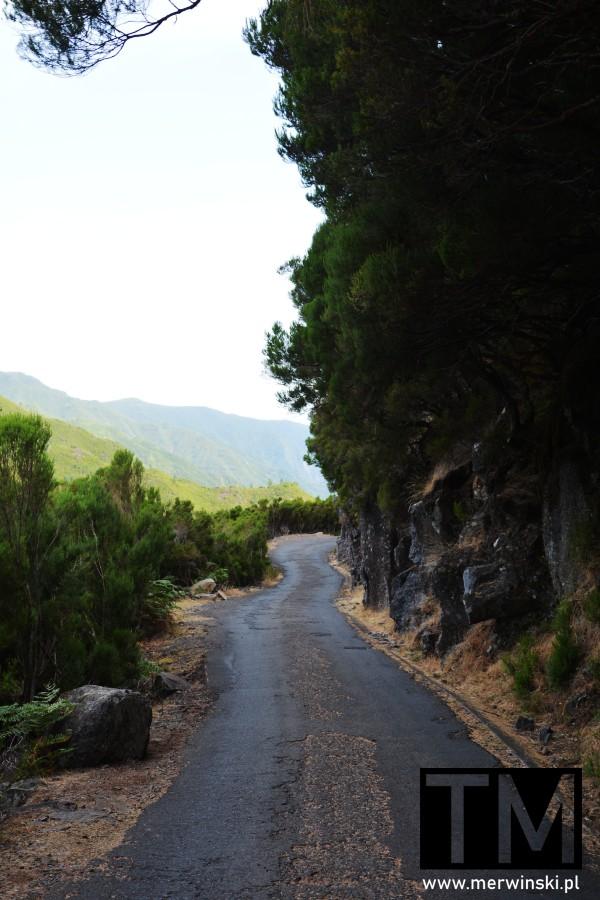 Asfaltowana droga prowadząca na lewady na Maderze