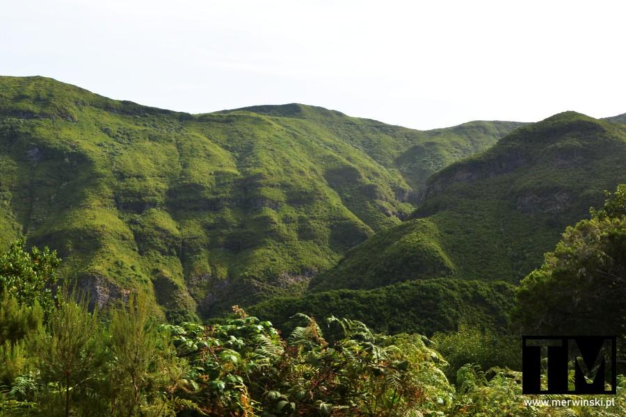 Pofałdowane i zielone grzbiety górskie Madery