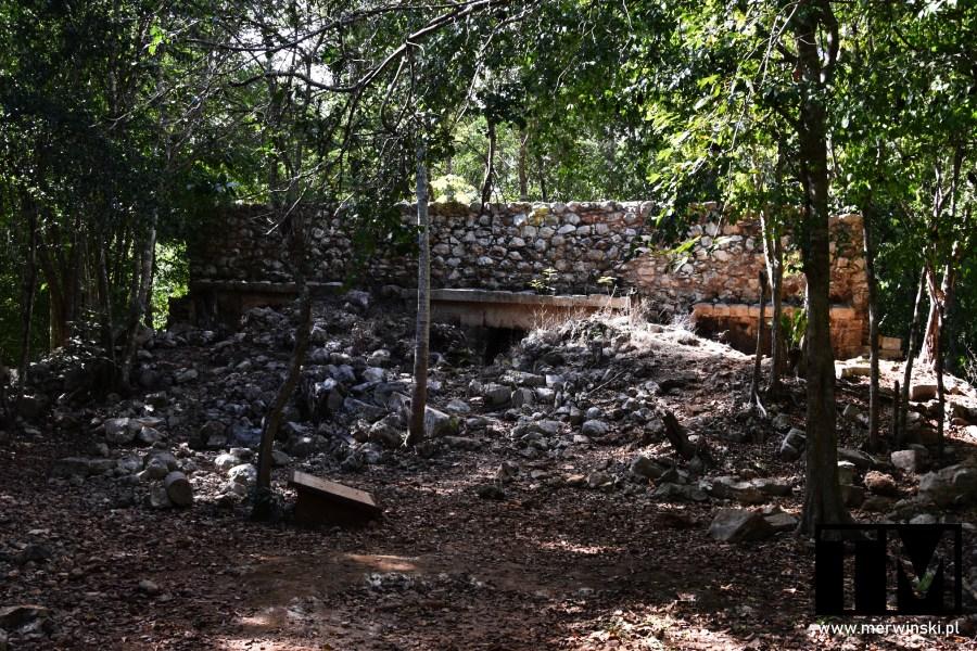Ruiny zagubione w dżungli na Jukatanie