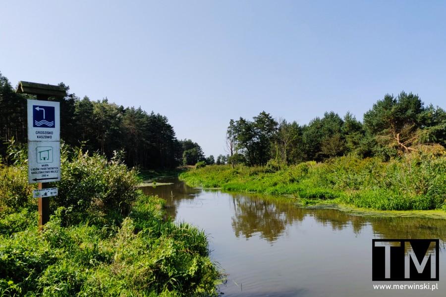Brzeg Baryczy przy grodzisku Kaszowo
