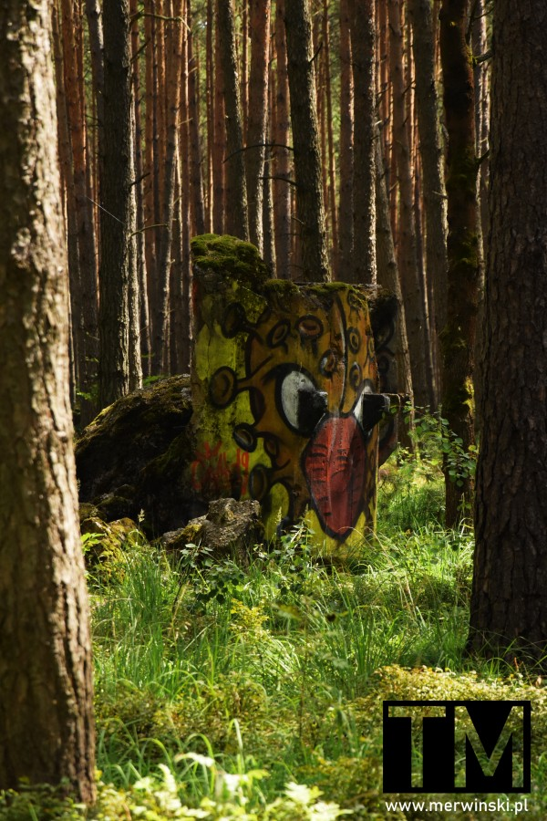 Ruiny w lesie, Dolny Śląsk