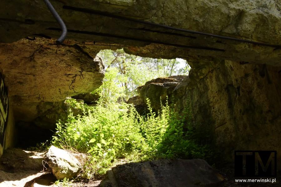 Zniszczony bunkier w lesie na Dolnym Śląsku