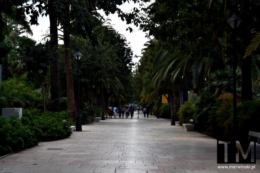 Park Miejski w Maladze