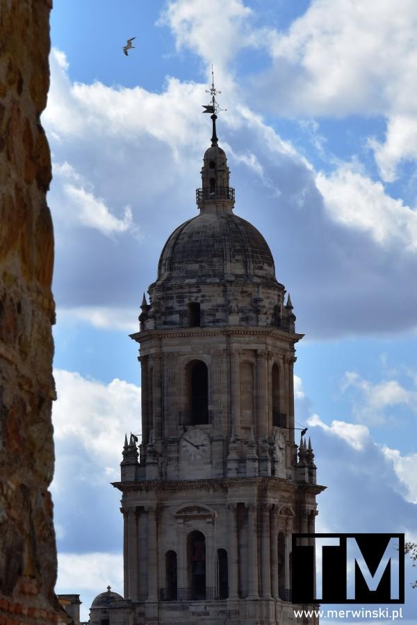 Wieża Katedry Wcielenia w Maladze